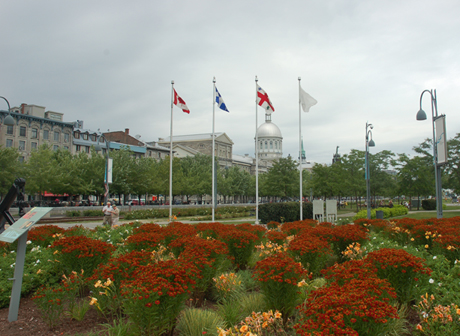 Montreal 05